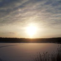 Солнечное гало :: Наталья Варламова