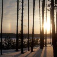 Радуга зимой :: Наталья Варламова