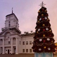 Елка у минскoй  городской ратуши. :: Nonna