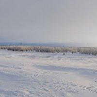 Настоящая Зима :: Ксения Угарова