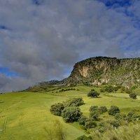 Хорошее утро в горах. :: Виталий Половинко