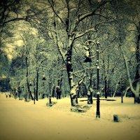 зима :: Maria Jankiv