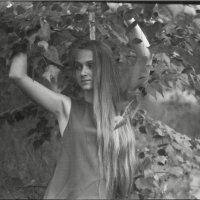 Портрет :: Eлена Ларина
