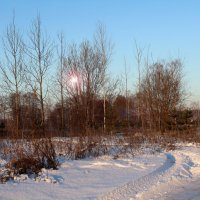 Зимнее утро. :: Андрей Чиченин
