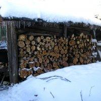Зимние запасы... :: ЕЛЕНА W