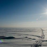 Сибирь :: Константин Карлин