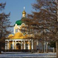 В Рязанском Кремле :: Nikita Volkov