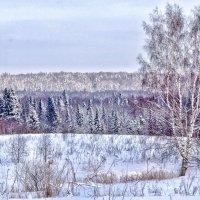 Морозное безмолвие :: Татьяна Буглова