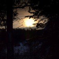 Морозный закат :: Татьяна Буглова