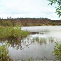 Озеро :: Наталья Варламова