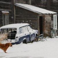 Зима подкралась незаметно :: Михаил Ананьев