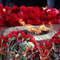 Вечный огонь = вечная память :: Данил Кукош
