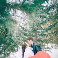 Зимняя свадьба :: Алина Траут
