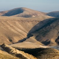 Израиль, Пустыня 3 :: Владимир Горубин
