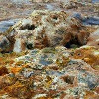 Смотри под ноги...(в царстве фумарол,Исландия) :: Олег Неугодников