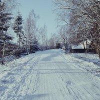 Зимняя дорога :: Анна Коваленко