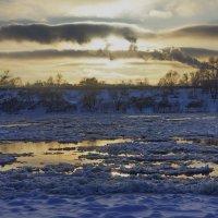 Январский ледоход на Оке. :: павел Труханов