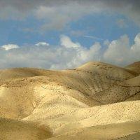 Израиль. :: сергей лебедев