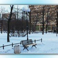 Урна,скамейка,фонарь,всё веселей зимовать. :: Александр Лейкум