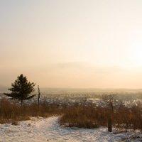 Теплый зимний вечер :: Тамара Морозова