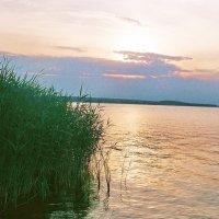 Теплая вода... :: Михаил Ковалев