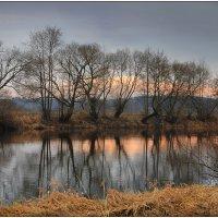 На реке Свислочь :: Елена Ерошевич