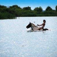 Девушка на лошади :: Наталья