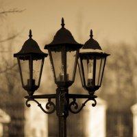 Уличный фонарь :: Геннадий Хоркин
