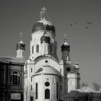 Покровский собор в Гатчине :: sv.kaschuk