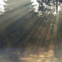Гимн восходящему солнцу.... :: Юрий Цыплятников