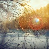 ловец солнца :: Елена Галицкая