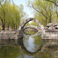 Китай. Пекин. Старый Летний Дворец. :: Виктория