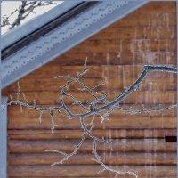 Зимняя арабеска :: Наталья Rosenwasser