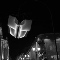 Ночная бабочка :: Евгений Платонов