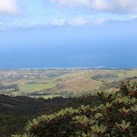 Маврикий :: Лариса Акбашева