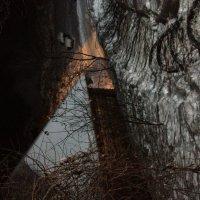 Хижина в лесу :: Анна Яр
