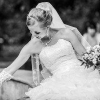 Свадебная фотография :: Александр Высокин