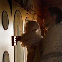 Фотографировать можно везде, где есть свет! :: Дарья Казбанова
