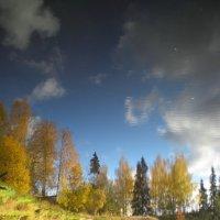 Отражение осени :: Наталья Ерёменко