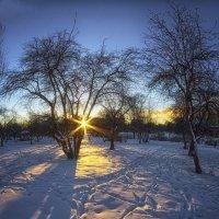 Зимний закат :: Алексей Соминский