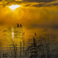 Зимний закат в тумане :: Юрий Клишин