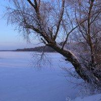 У озера :: Юрий Морозов