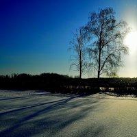 Два дерева и солнце. (финал). :: Полторыхин Юрий Полторыхин.