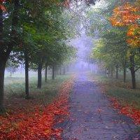 Жёлто-красная осень крадётся :: Егор Плетенец