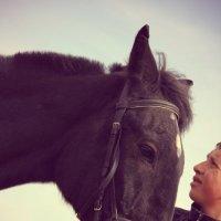 конь :: Дмитрий Потапов