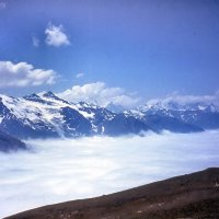Где снега тропинки заметают... :: Дмитрий Ерохин