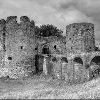 Копорская крепость :: Елена Slychainaya