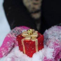подарок :: Виктория Симонова