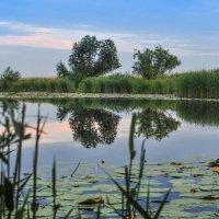 Озерцо под Алгой... :: Vladimir Beloglazov