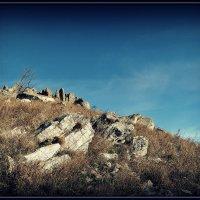 каменная пустыня :: Ник Карелин